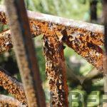 Как повысить стойкость краски на металлической поверхности и при этом защитить его от коррозии, даже если металл уже поржавел?